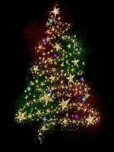 Mimico Christmas Tree Lighting in Mimico Square – Oak Learners