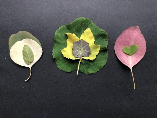 expressing creativity through nature