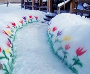 paint the snow